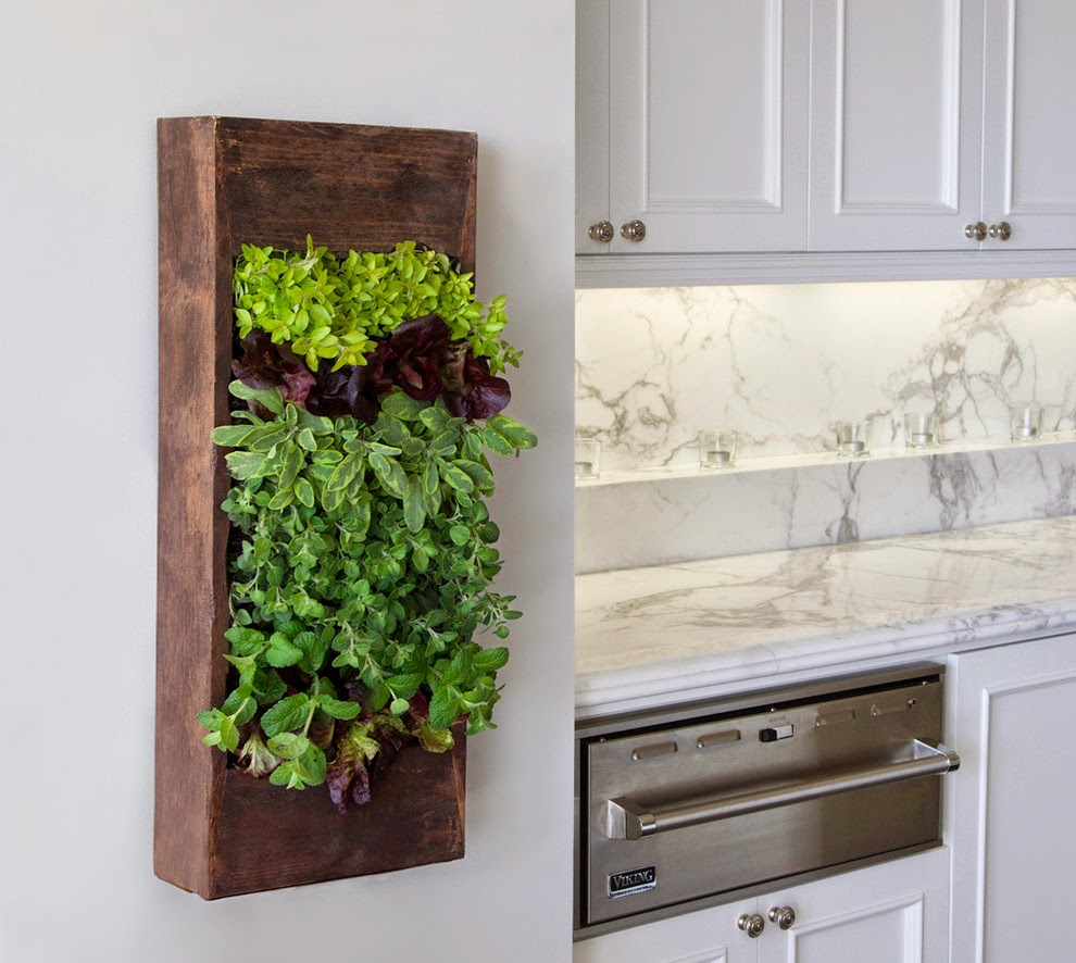 Kitchen Window Herb Planter: 15 Phenomenal Indoor Herb Gardens