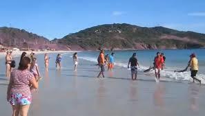 منوعات بالفيديو ... مستحيل تصدق ماستراه ولكنه حقيقة  - الصيف - البحر - المصايف المصيف الشاطىء الشواطىء