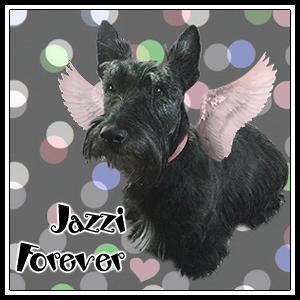 Jazzi Forever