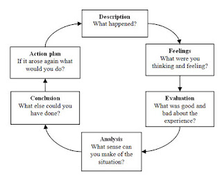 Reflective Essay Examples Nursing