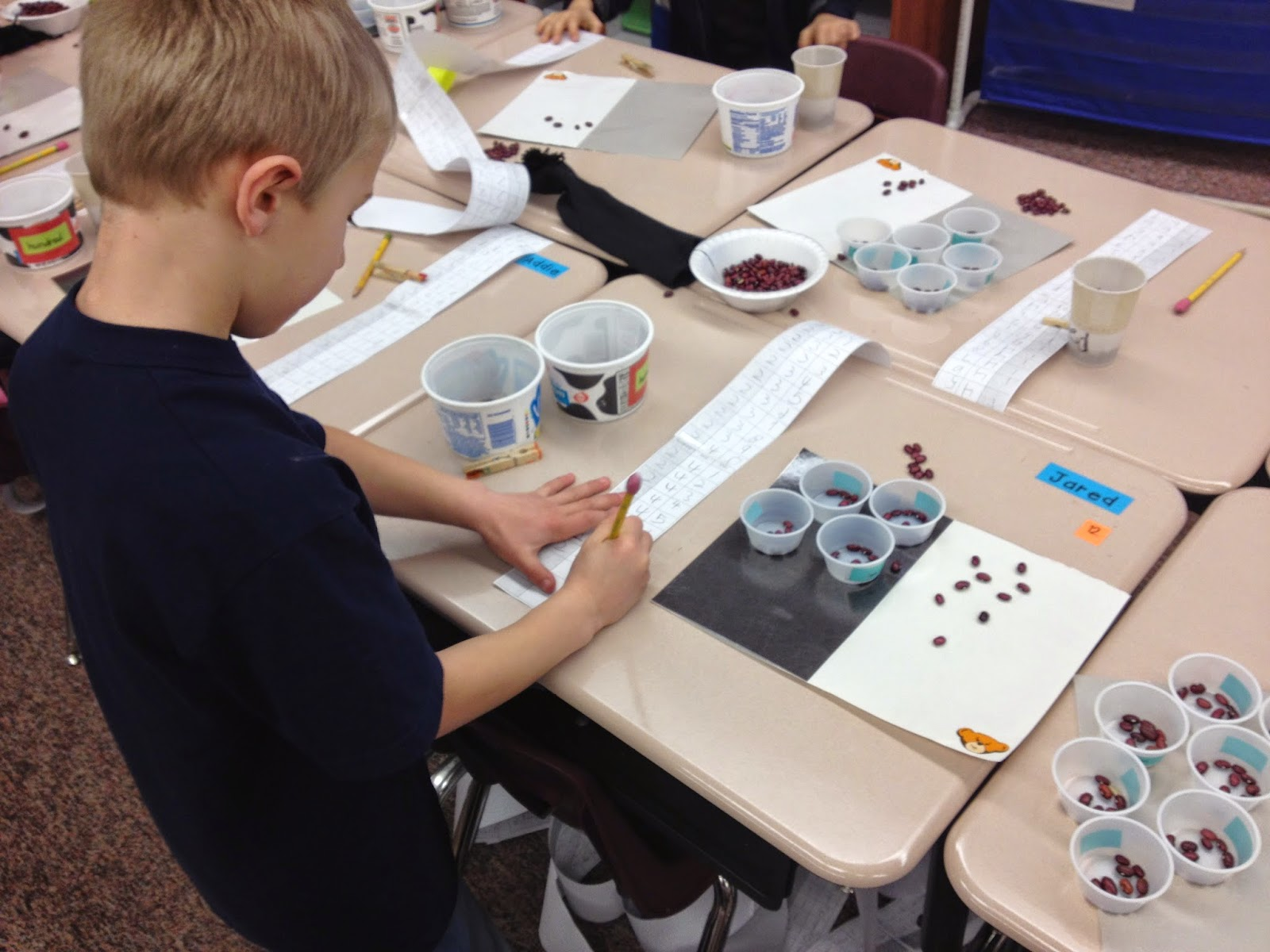 Using beans to build a stronger understanding of place value
