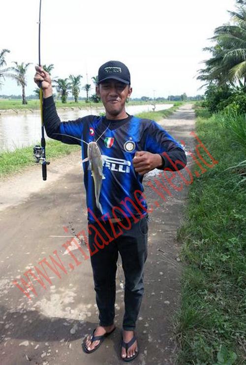 Umpan Pancing Ikan Baung