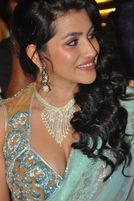 anjali lavania @ panjaa audio launch close up excl hq glamour  images