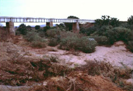 Tsavo Railroad Bridge