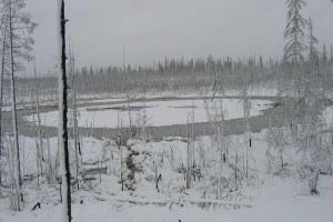objeto metalico hundido en pantanos de la siberia en rusia