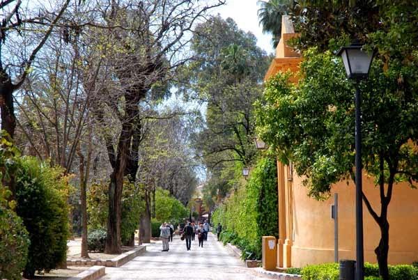 Casa annika jardines de murillo och judiska stadsdelen for Jardines de murillo