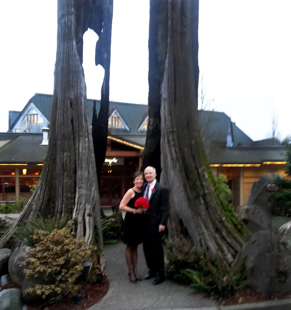 Sheila and John near the tree at Willows Lodge - Patricia Stimac, A Heavenly Ceremony