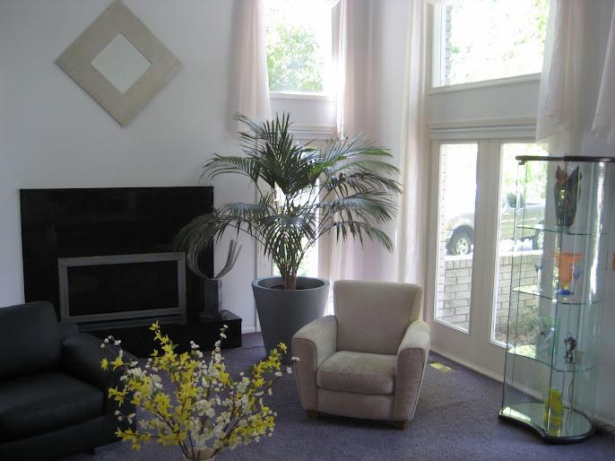 #5 Indoor Plant Decoration Ideas