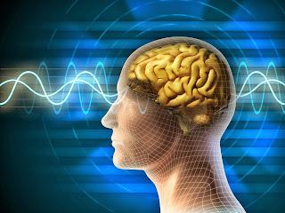 """Поезія як музика. Читання поезії активує """"музичні"""" області мозку"""