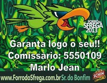 GARANTA LOGO O SEU SFREGA 2013
