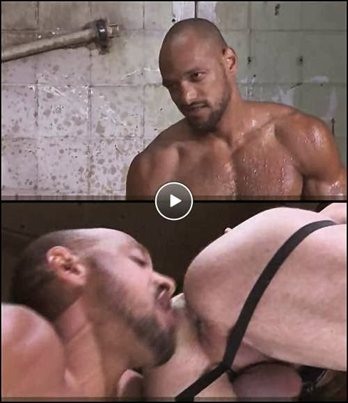 gay muscle sex porn video