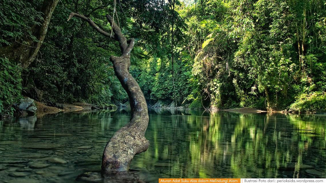 Aturan Adat Suku Alas dalam Melindungi Alam