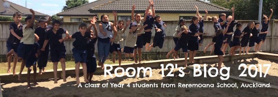 reremoanaroom12-2017