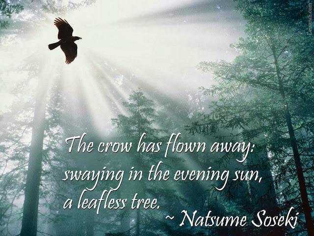 Natsume Soseki, haiku, crow, evening sun, leafless tree