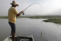 Seguro desemprego pescador artesanal