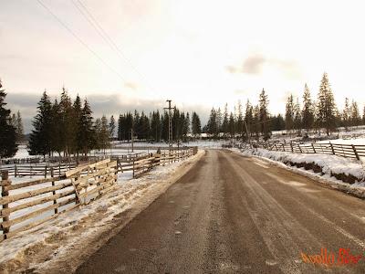 Drum reabilitat Comuna Bilbor