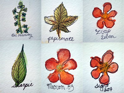 Several Watercolor Exercises