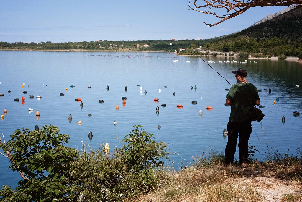 Fishing in croatia and in the neighbourhood november 2014 for Fishing in croatia