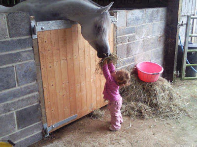 Lovely Baby girl Feeding Horse