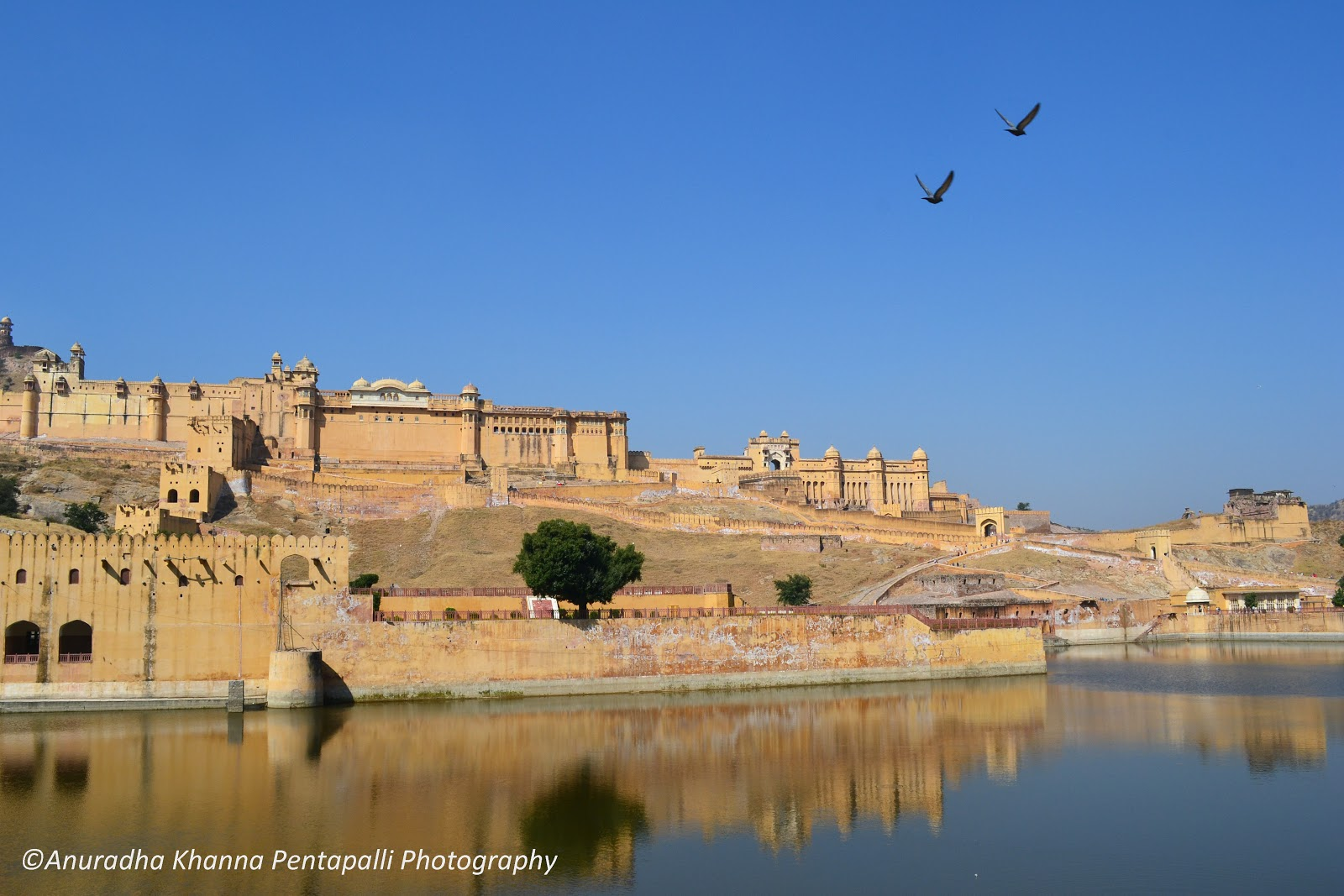 Jaipur tourism youtube browse info on jaipur tourism for Wallpaper for home walls jaipur