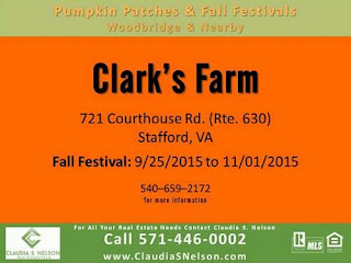 Pumpkin Patches near Woodbridge Virginia 2015, Clark's Farm Stafford
