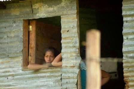 Capriles Radonski: Destruyeron la cosecha