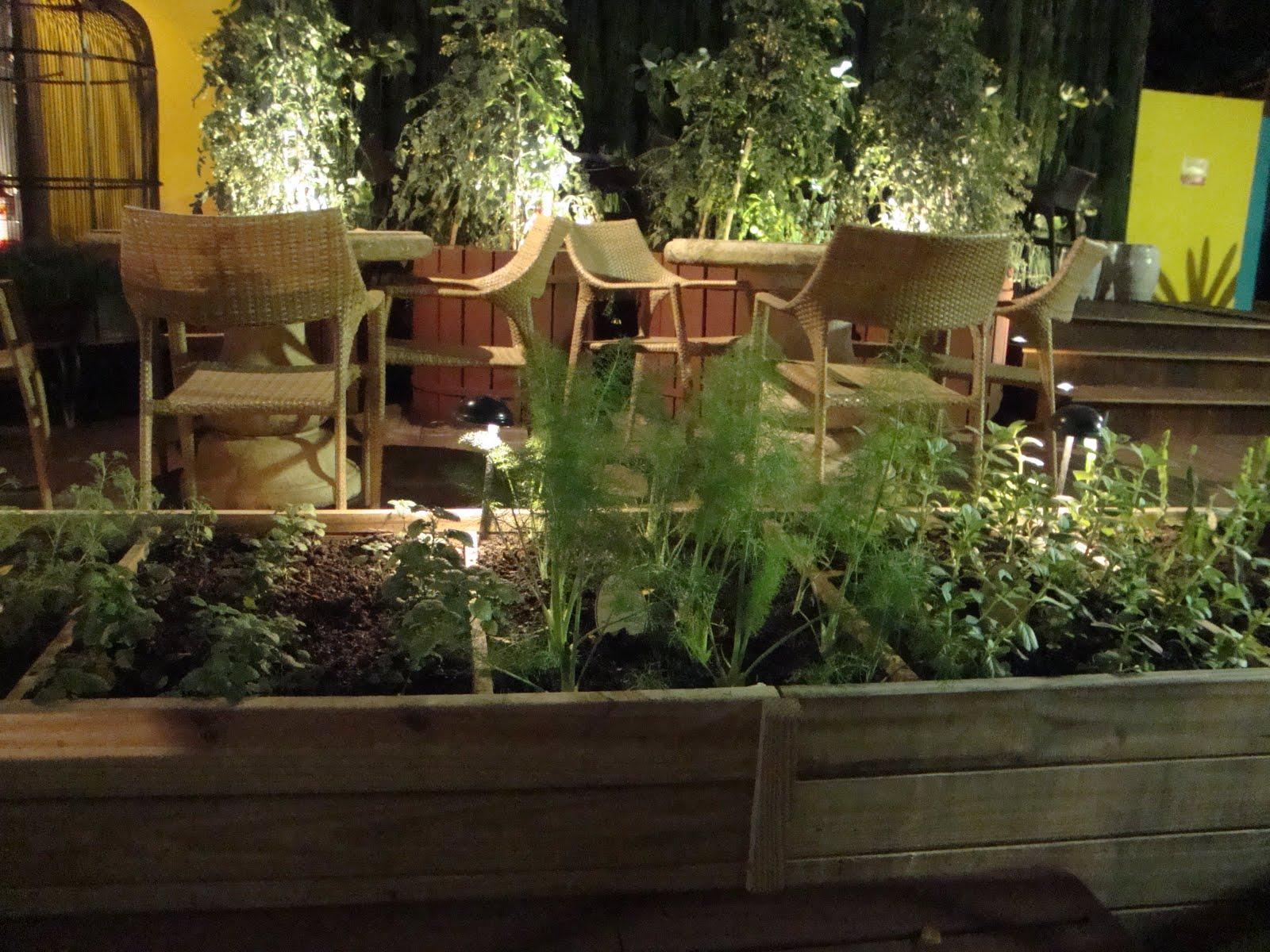 quintal que virou jardim:Parece um jardim mas é uma horta, aliás nada impede de que um jardim