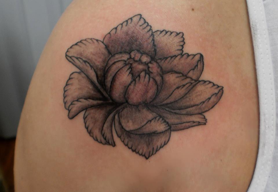 tattoo flor de lotus tatuando nas cidades de santa cruz do sul e ...