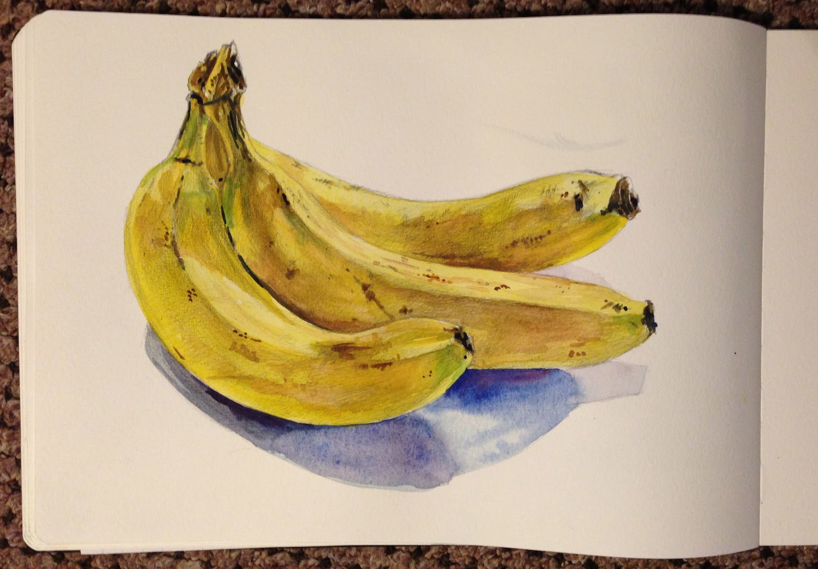 Bunch Of Bananas Water Colour And Pencil Moleskine Sketch Book Julie Douglas