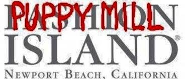 Fashion Island Newport Beach, Russo's Pet, Russo's Pet Experience, Russo's Newport Beach