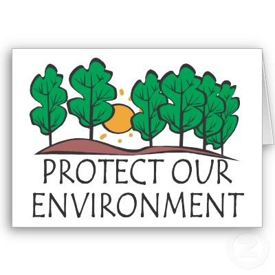 protect environment pollution essay