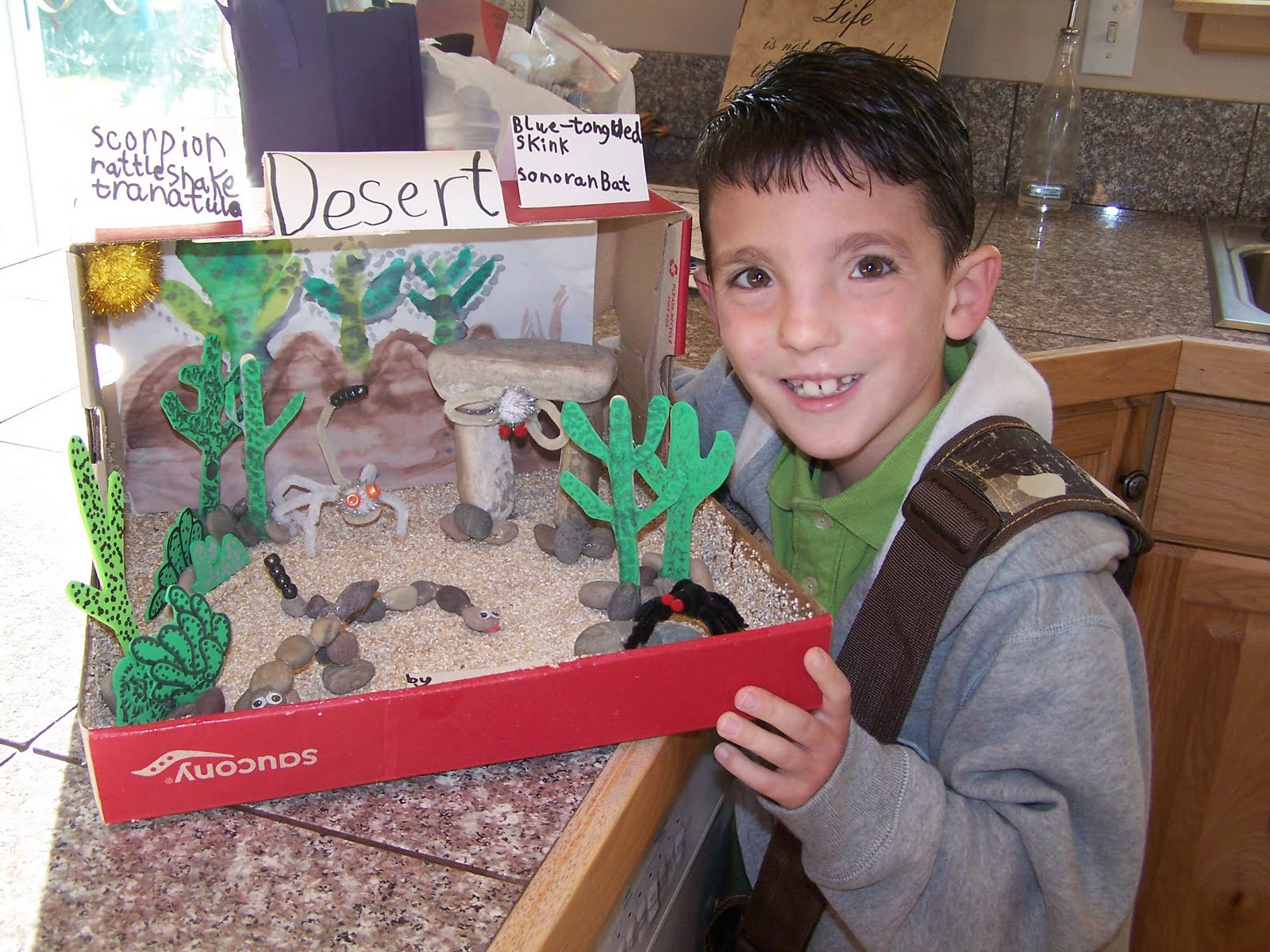 Snake Projects With Shoe Box http://teambryanshomeplate.blogspot.com/2011/08/kendals-desert-habitat-diorama.html