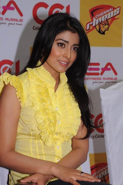 shriya saran at ccl promotional event actress pics