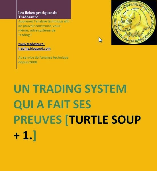 "Ebook: vidéo exclusive+exercices+correction: le système de trading ""turtle soup"" revisité"