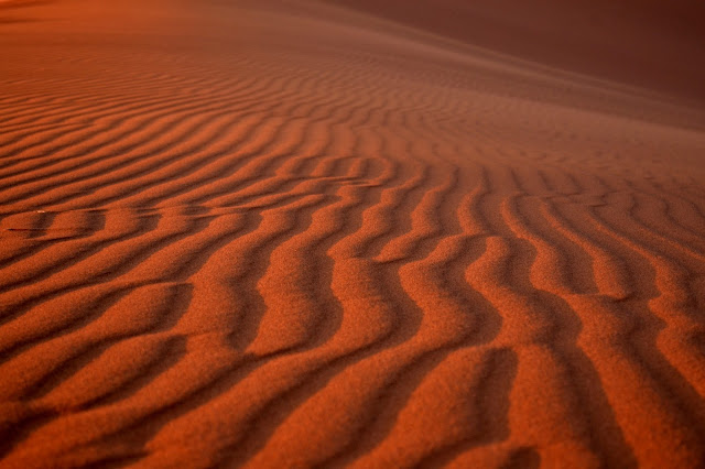 Waves in sand dunes in Sossusvlei