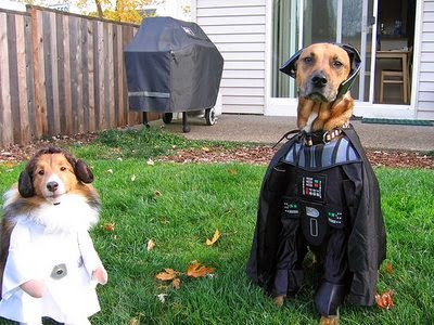 Star Wars Vader and Leia Halloween Costume