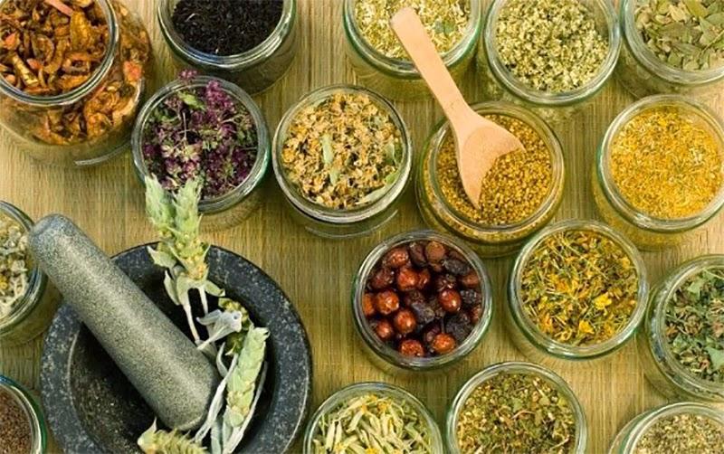 Recoltarea şi păstrarea plantelor medicinale