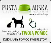 Pusta miska- pomagajmy zwierzakom