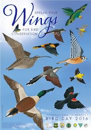 Día Internacional de las Aves Migratorias