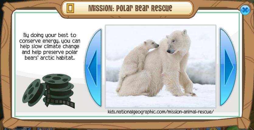 Do Polar Bears Have A Good Food Sourse