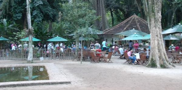 Piquenique no Rio de Janeiro Jardim Botânico