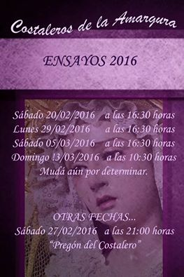 ENSAYOS AMARGURA 2016