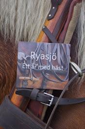 Inspirationsfilm om hästkörning säljes
