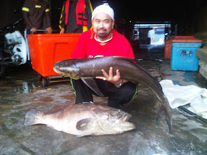 Catch of the Kuala Sepetang Trip 2