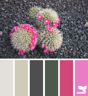 http://design-seeds.com/home/entry/desert-color