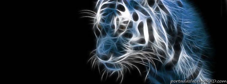tigre luminoso, portada para tu facebook