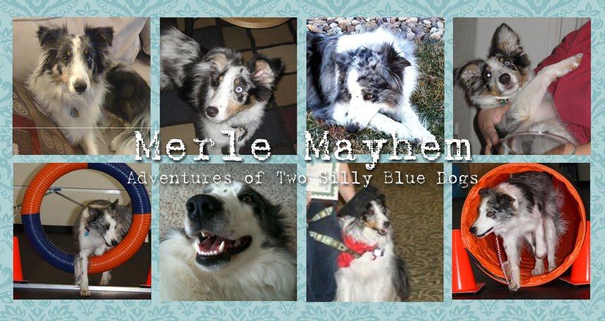 Merle Mayhem