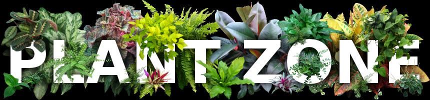 Plant Zone