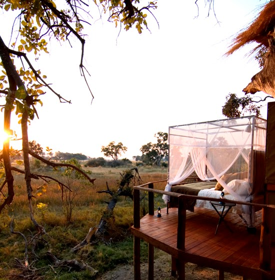 Safari Fusion blog | A bed with a view | Spectacular floodplain views at Baines Camp, Okavango Delta Botswana