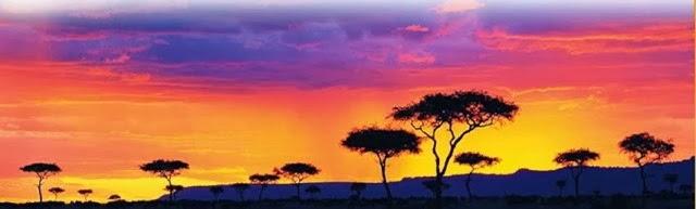 ทุ่งหญ้าสวันนาในทวีปแอฟริกา